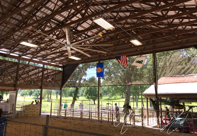 Barn Show Arena containing the American Flag, the FFA flag, and the 4-H Flag